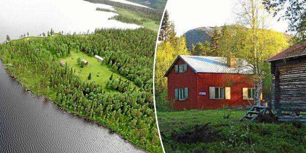 Fjällgård till salu i väglöst land – här bor du på en egen udde