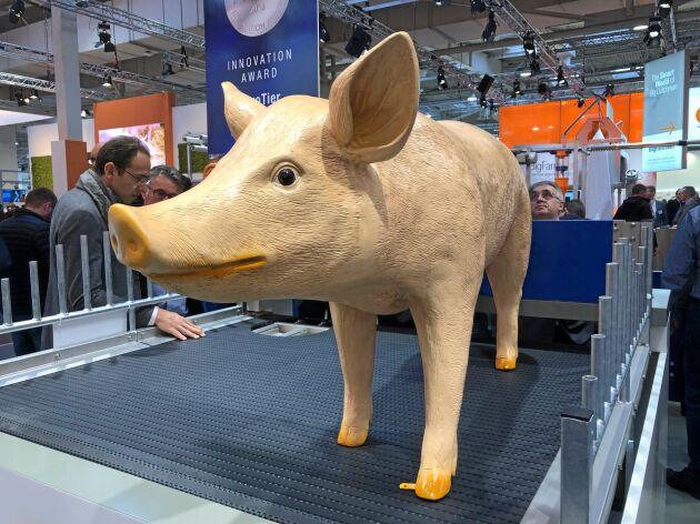 Pig T är namnet på Big Dutchmans nya gristoalett som effektivt separerar urinen från de större fraktionerna.