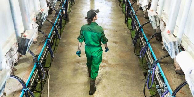 Nödrop från unga lantbrukare: Höj EU-stöden!