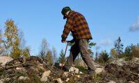 Ukraina stoppar utresor för skogsarbetare