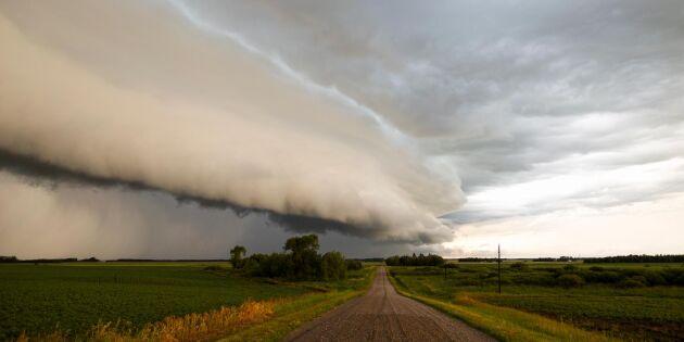SMHI: Regn och ostadigt väder att vänta