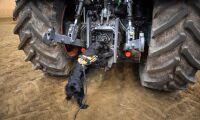ATL-podden: Hundar letar ogräs