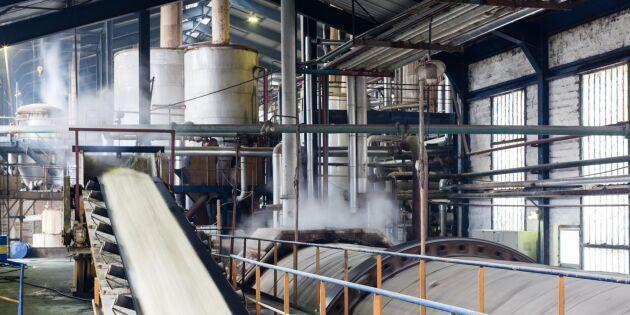 En miljard till svensk sockerproduktion