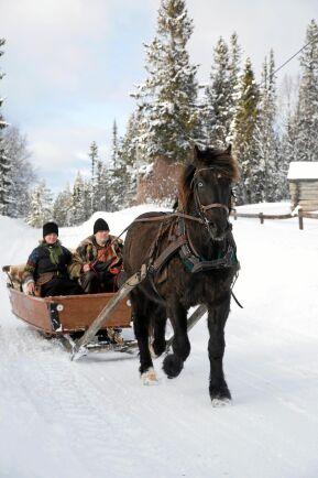 Pecka och Marika njuter av en slädtur i vinterlandskapet nära Sonfjället.