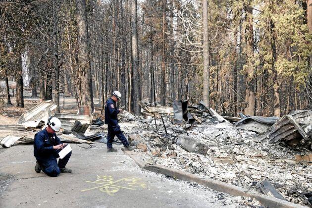 Det brinner våldsamt i Kalifornien. Camp fire-branden i norr omfattar 75 000 hektar och är nu till 95 procent under kontroll.