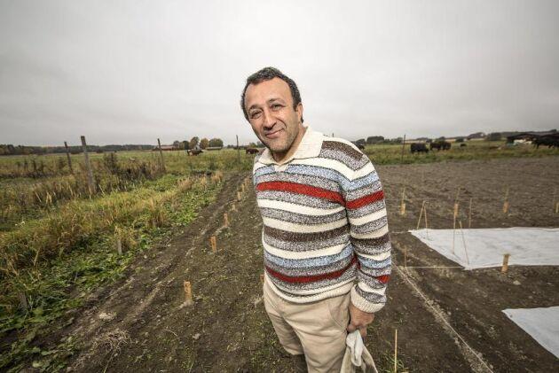 Mohammad Sameri, SLU Uppsala, forskar om perenna spannmål och vallgräs.