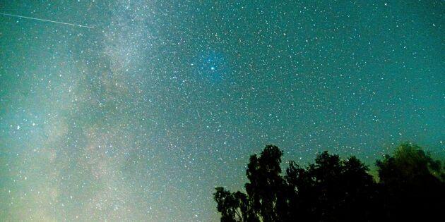 Nu når meteorregnet perseiderna klimax – så ser du stjärnfallen!