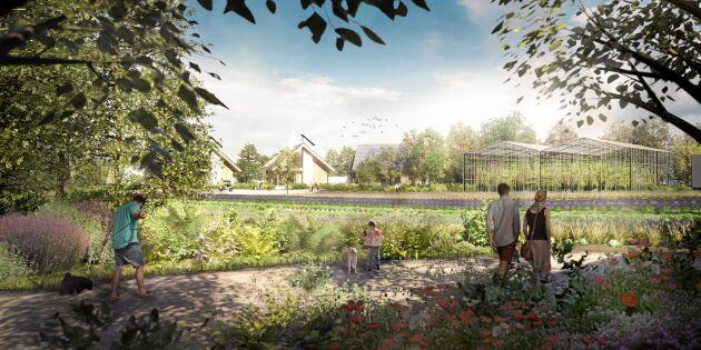 Spana in framtidens självförsörjande ekoby – som kan börja byggas i Sverige