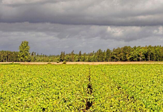 Markägaren ska undantas ersättning om marken ska användas till samhällsnyttiga verksamheter, föreslår en utredning.