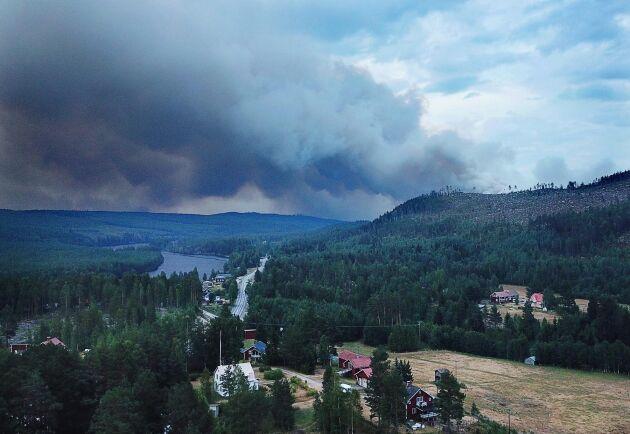 Skogsbrandsdrabbade markägare i Enskogen ser inte ut att få någon ersättningsmark för ytor som förstörts av sommaren rekordbränder.