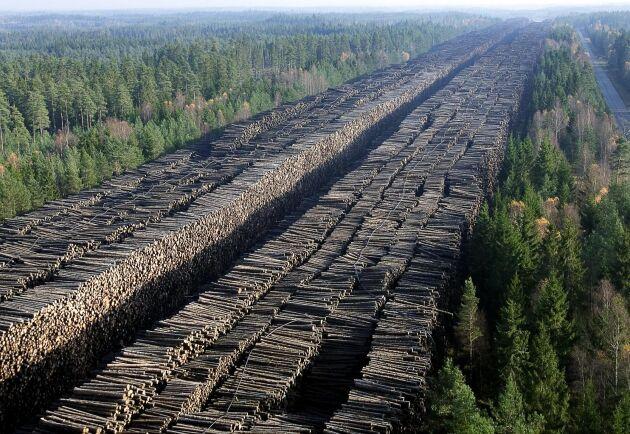 Skogsbolaget Vidas timmerlager i Byholma efter stormen.