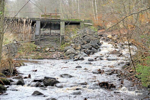 Riven vattenkraftsdamm i Stendals mölla, Ängelholm.
