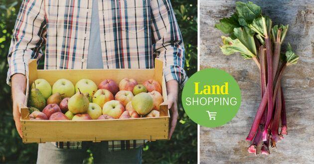 Förvandla trädgårdens frukt, bär och grönsaker till magiskt goda drycker.