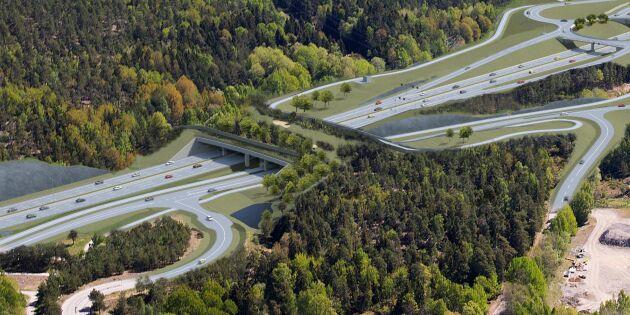 En 60 meter bred ekodukt byggs på Södertörn