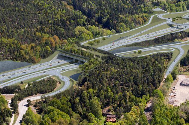 Ekodukten, det vill säga en bro som håller ihop ekosystem på ömse sidor om en väg och gör det möjligt för vilda djur att passera, blir cirka 90 meter lång och upp till 60 meter bred.