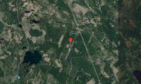 Nya ägaren ärver skogsfastighet i Gävleborg