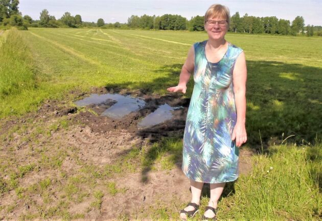 """""""För några månader sedan stod vattnet så här högt"""", berättar Inger Söreke och visar med handen."""