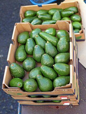 Avokadon importeras från Central- och Sydamerika där tallskog skövlas för att utöka odlingarna.