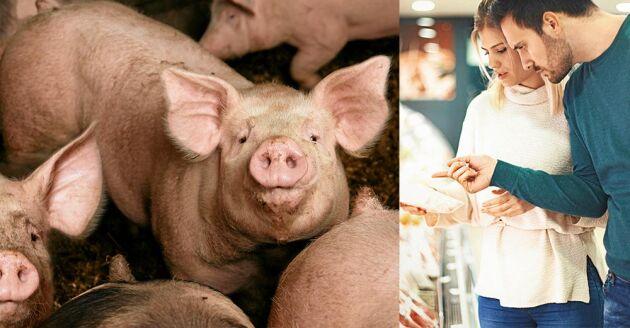 Väljer du kött från djur som inte är pumpade med antibiotika så bidrar du till att minska antibiotikaresistensen som i förlängningen är ett hot mot vår hälsa.