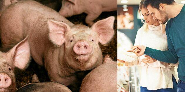 Ny rapport: Antibiotikaresistens största hotet mot vår hälsa