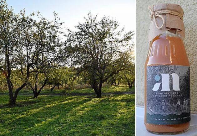 Paret Tolstojs 150 år gamla äppelträdgård är basen för företaget Jasnaja Poljana Gardens, som gör ekologisk äppelmust.