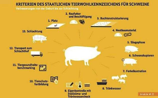 Kriterierna för den nya djurskyddsmärkningen.