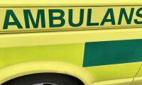 Buss krockade med hästar -14 skadade