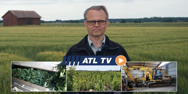 ATL TV: De sådde raps i en månad