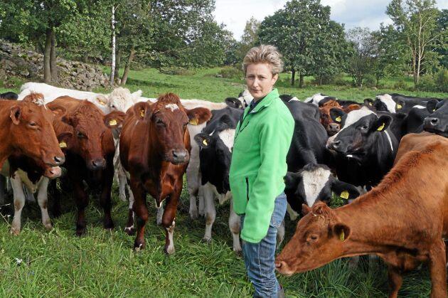 Anna Ericsson tror att många mjölkföretag förlorar på att kvigorna går ute för länge på hösten.