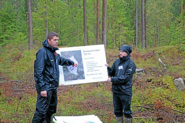 Mattias Berglund, till vänster, och Sebastian Backlund, till höger, går igenom förutsättningarna för skogssällskapets tjäderförsök.