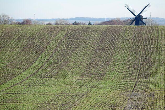 Frågan om användning av avloppsslam som gödningsmedel är kontroversiell.