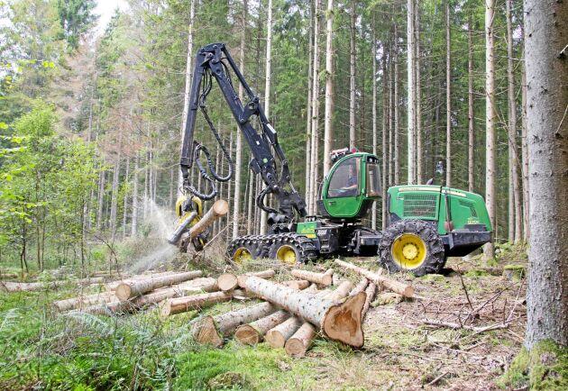 I augusti ökade intresset att avverka markant i Götaland, samtidigt som det minskade i Norra Norrland.