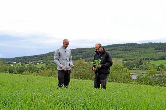 – Hade det varit bra väder hade vi kört idag, konstaterar Lars och Niklas Larsson på Jon-Jons lantbruk i Växbo, Hälsingland.