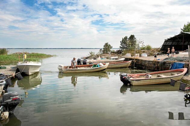 Släktens lilla fiskeflotta av båtar som passar för fiske i Vänern.