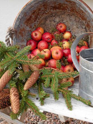 Röda äpplen och röda tyger är fint mot allt det vita och ljusa i huset.