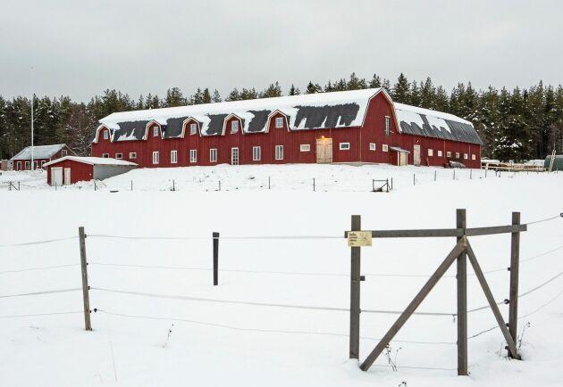 Den gamla ladugården revs och en ny är uppförd med plats för kursverksamhet, kafé, lanthandel och kor.