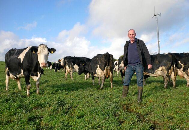 Lorcan McCabe har 70 mjölkande kor och sparar mycket på foderkostnaderna tack vare att korna går ute en stor del av året, dessutom förbättras djurhälsan.