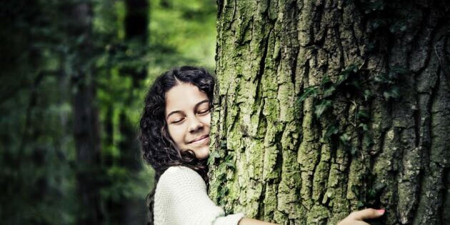 Spaning: 7 tecken på att naturen aldrig har varit hetare