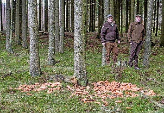 För att inte få ansamlingar av kronhjortar vid utfodringsplatser har Christinehof många platser för utfodring. Dessutom flyttas de regelbundet.