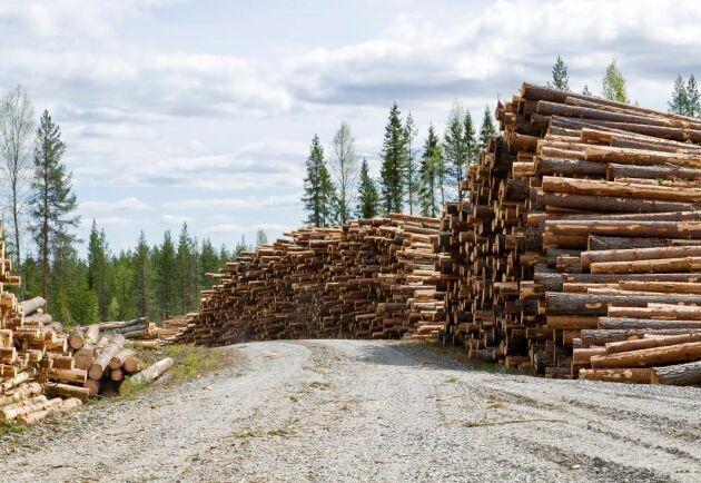 Skogsägarna i södra Norrbotten går ut och ställer krav på bättre betalt för sitt virke. I ett upprop uppmanar de andra skogsägare i landet ställa samma krav.