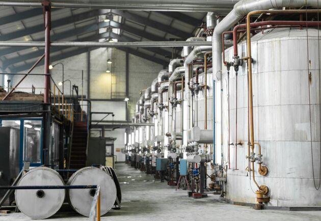 Nordzucker har fattat beslut om att satsa runt en miljard kronor i ett svenskt sockerproduktionsprojekt, som beräknas vara genomfört hösten 2021. (Arkivbild)