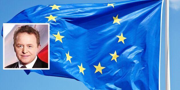 Fiffelanklagad polack kandiderar till jordbrukskommissionär