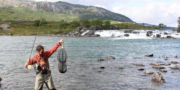 Perfekta guiden till fiskesemestern – 10 tips för bästa fjällfisket