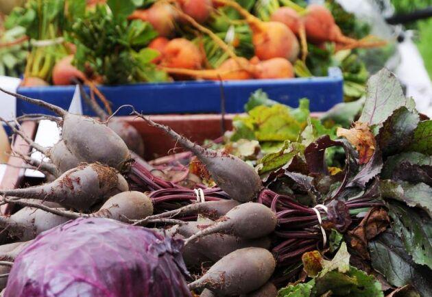 Hundratals ekomärkta produkter i nederländska livsmedelsbutiker lever inte upp till EU:s ekologiska krav.