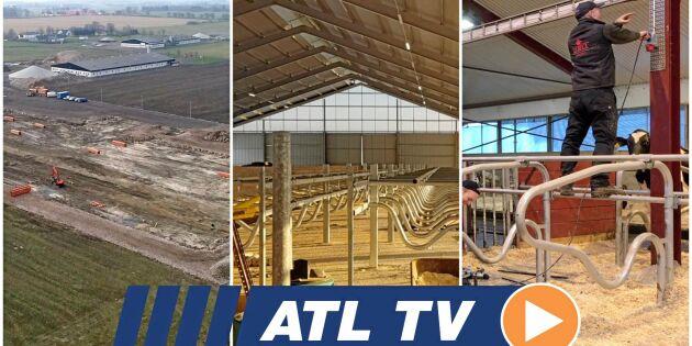 ATL TV: De tror på svensk mjölkproduktion