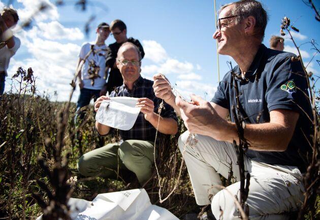 Markus Hoffmann håller i en tvättlapp identisk med den som grävdes ner här i början av sommaren. Växtodlingsläraren Per-Erik Larsson håller i vad som återstår när lappen precis grävts upp.
