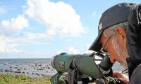 Samarbete med ornitologer gynnar naturvården