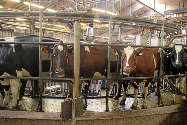 Efter åtta år i drift kommer mjölkningskarusellen att parkeras.