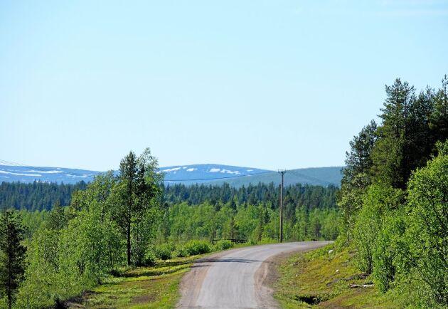 Ersättningen för fjällnära skog äter upp Skogsstyrelsens budget.
