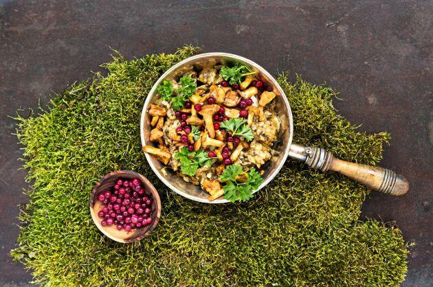 Viltskav, lingon och svamp är en urgod smakkombination.